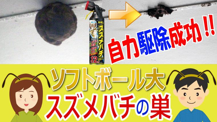 画像:【自力駆除】軒下にできたスズメバチの巣:後編